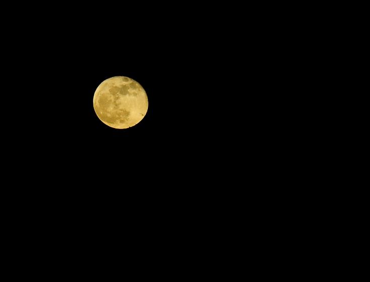 Shoot the moon_1